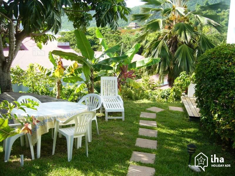 comment bien entretenir sa pelouse le passage scarificateur pour la pelouse navi mag. Black Bedroom Furniture Sets. Home Design Ideas