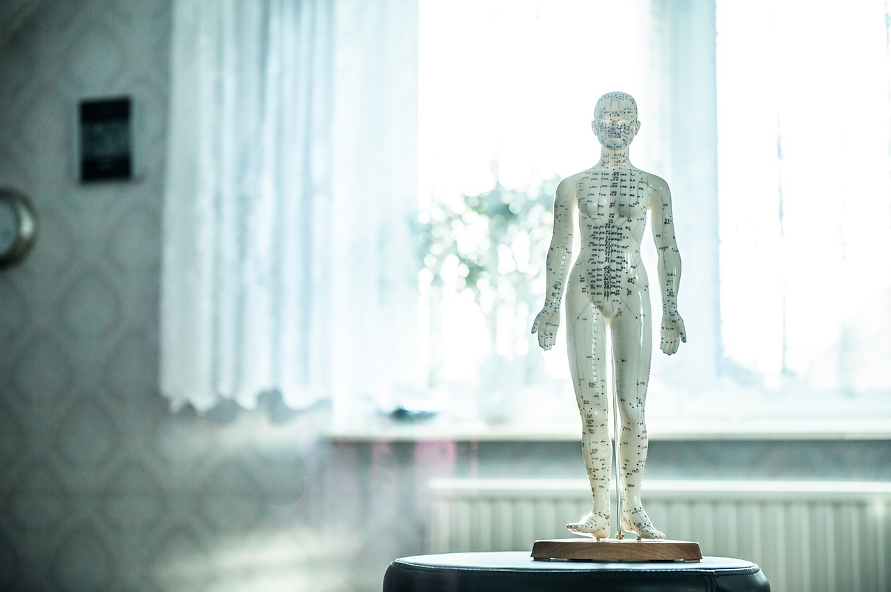 corps humain - ostheopathie